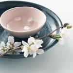 日本料理で困ったときに役立つ対応集 イメージ